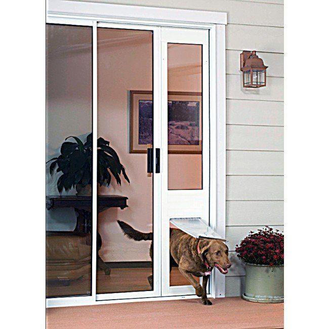 glass insert dog doors